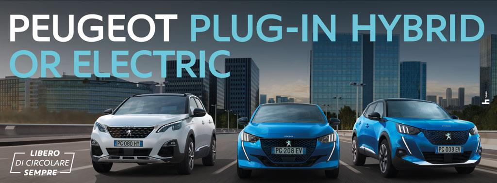 Gamma Peugeot Electric